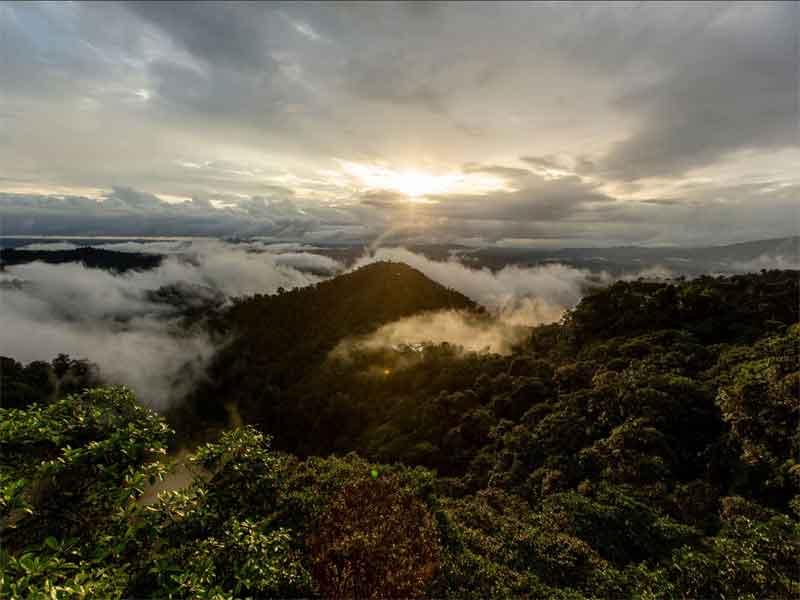 ECUADORIAN CHOCO RAINFOREST sunrise